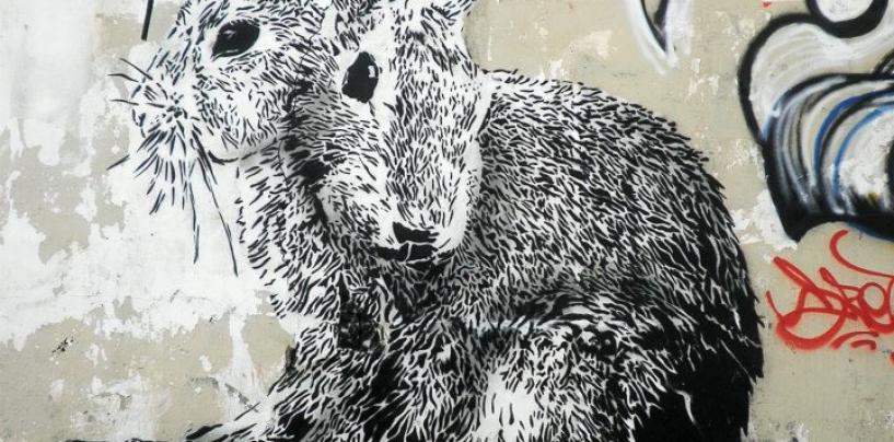 """Граффити в Тель-Авиве: Дэдэ соблюдает """"анонимность"""""""