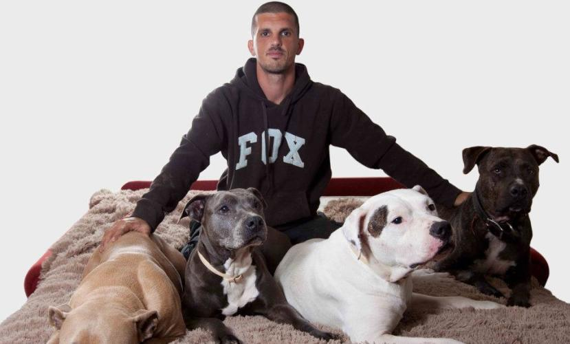 Беседа с Ювалем Менделовичем – спасителем израильских собак