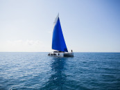 Где арендовать яхту и как получить права на ее управление
