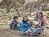 Записки из Эфиопии. Ч.1. Репатриация