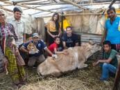 Беседа с врачом гуманитарной миссии в Непале, Гилем Динор