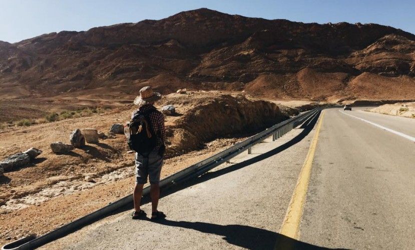Есть ли жизнь в пустыне