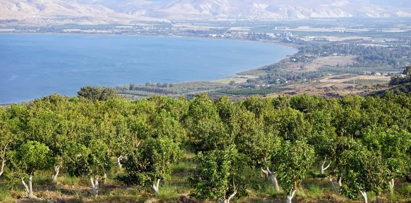 Соль земли. Север Израиля