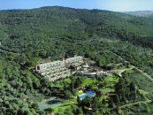 Лесной курорт в районе Хайфы