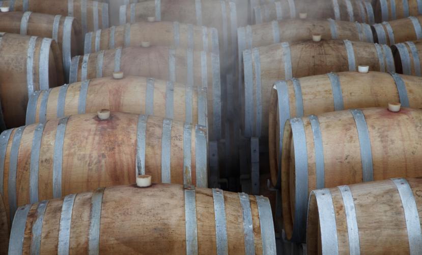 Израильское вино: от библейских истоков до засилья виноделен-бутиков