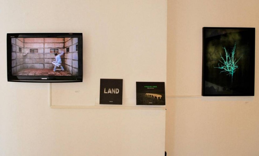 Обзор: 5 лучших выставок современного искусства