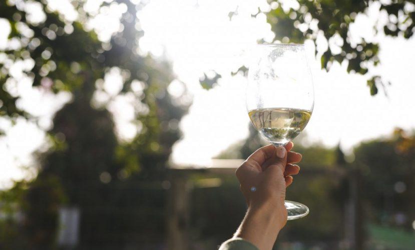 Винодельня Tabor