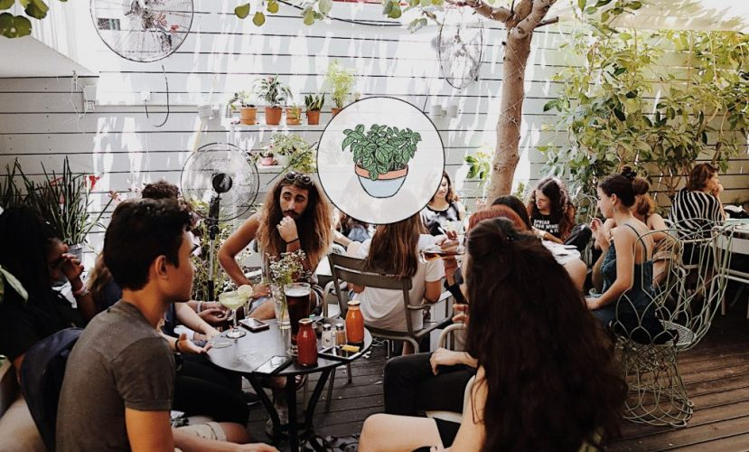 Jonesy Gardener –сад-кафе в центре города