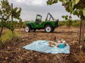 Винодельни к северу от Тель-Авива