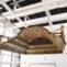 Обновленный Музей Еврейского Народа ANU открыл двери для посетителей